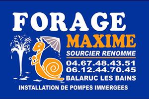 FORAGE MAXIME